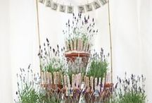 Wedding Table & Seating Plans / Show your guests to their seats in style. / by Whimsical Wonderland Weddings