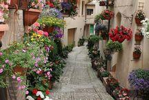 Sokaklar / Streets