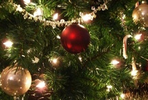 Christmas Ornaments / by Sherry Littlejohn