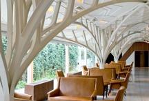 Modern Interior A Go Go  / by Carol Roberts