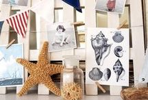 Beach Inspired DIYs / Remember your once in a lifetime beach memories with these crafty and clever DIY projects!