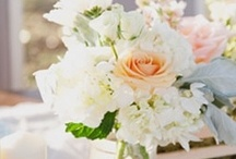 Flowers / by Katrina Klassen
