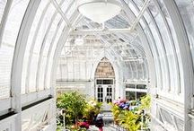 Conservatories, Sunrooms, Solariums, Orangeries, Greenhouses. / by Haifaa Tannous
