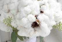 Cotton Pick'N Cotton / by Kathie Lane