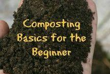 Gardening - Compost / by Phil Elliott