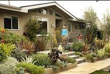 Pacifica house: Landscaping / by Sophie Heiken
