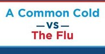 Surviving Flu Season / Is flu season getting you down? Find helpful tips for staying healthy or fighting back against illness here!