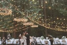 The Day - a celebration / Would love a forrest wedding,no extreme formal setting etc.Everyone must have LOADS of fun.It must be an absolute celebration!