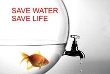 Water Conservation at Home / Great ideas for conservative living.