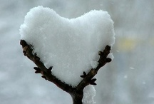 to have a heart / it's all about love