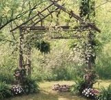 Garden Trellis / Add architectural interest to your garden, texture to your indoor walls or frame a wedding!