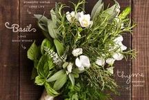 Uncommon Bridal Bouquets & Boutonnieres / Never Settle for Ordinary, especially when it comes to your big day!  Customize your bridal bouquet to you wedding theme with unique wedding bouquet & boutonnieres from Indeed Decor.