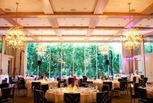 The Wedding Reception / Wedding Reception