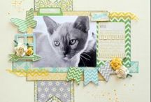 Pet Scrapbooking Pages / by Karen Jorgensen