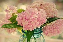 Flower Power ;)