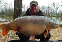 Beausoleil Big Carp / The biggest carp captures from Beausoleil, a French carp and catfish holiday venue with accommodation in North West France.