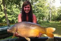 Best carp of Beausoleil / Here is a selection of carp taken from this exclusive holiday venue