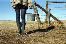 farmsteading