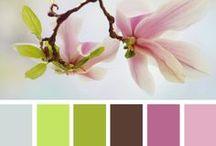 Colors combos