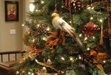 Christmas / by Brenda Franks