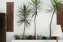 Exteriors / Exteriors, garden design and landscape ideas.