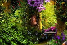 Loving Loveliness  / Images that I find lovely to look at; they help me through the days. Mostly landscapes, places and gardens.