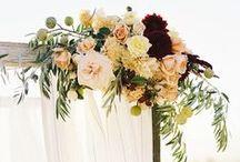 Weddings & Beyond / Cute wedding, honeymoon & baby ideas ❤️ / by Emily Barton