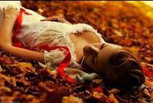 Autumn in my Vines