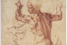 The Anatomist / A study of form and musculature in art, sculpture and photography.