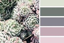 Decor - Colors & Patterns / Palettes and prints that fascinate me