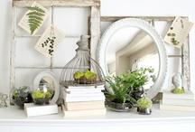 Spring Decorating / by Tara Jacobsen - Marketing Speaker & Mentor
