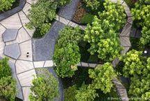 Landscape Architects - SHMA Design