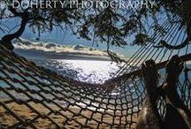 Hammocks / I like hammocks and so should you.