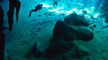Diving / Diving sites, gear, pics, and info.