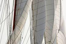 Sail / by Linda Anne Brown