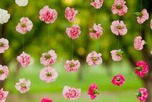 Garden + Lanscaping / by Dena Rooney Photographer