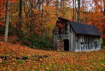 West Virginia / by Beverly Lett