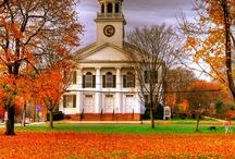 Autumn (3) / by Beverly Lett