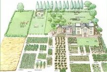 Garden Plans & Planting Designs / What to Plant Where