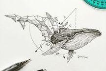 Whale - Baleine