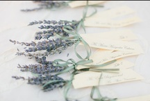 Escort Cards/Place Cards