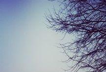 My Instagram Pics