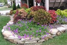 Garden ideas / by Terri Mendoza
