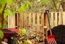 Composting / by Marcia Shaffer Bane