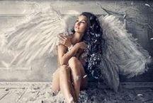 Wings /