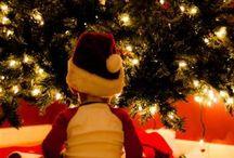 Christmas Freak. / by Alicia Trujillo