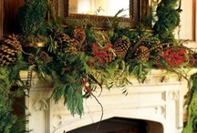 Christmas Decorating Ideas / by Kristy Williams