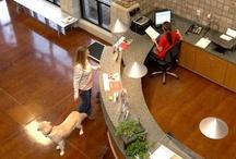 Reception Desk Ideas_Animal Care Facilities / by Animal Arts