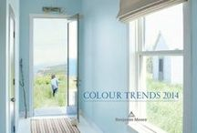 2014 Color Trends / Too many paint colors to pick from?  Let us help!