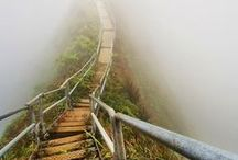 Take a wander